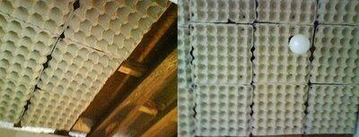 Los cartones de huevos como aislante ac stico mundo digital - Aislante acustico para paredes ...